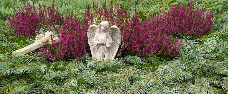 Diese Grabstelle wurde im Herbst für den kommenden Winter vorbereitet und mit Tannenzweigen eingedeckt.  ( Foto: Shutterstock-Angela Rohde )
